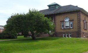 Tree at Acadia University
